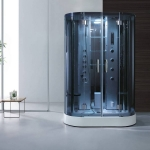 Curved shower steam room for two persons