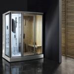Dry & Wet steam room